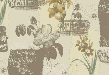 Giấy dán tường tranh Olivia III 3701-2