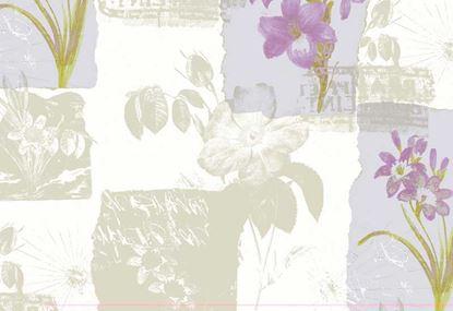 Giấy dán tường tranh Olivia III 3701-1