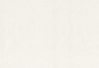 Giấy Dán Tường trắng Kara 2071-2